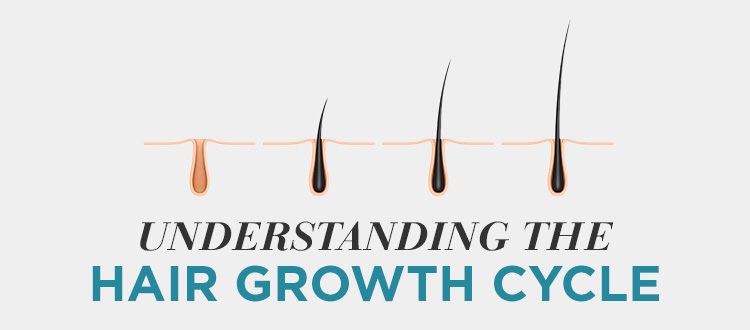 Understanding the Hair Growth Cycle