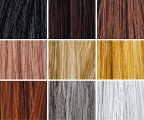 Toppik hair color options